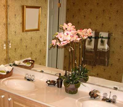 цветок у зеркала в ванной