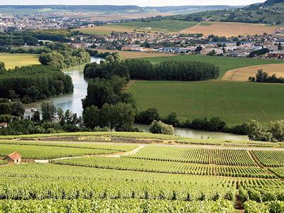 достопримечательности Франции виноградники