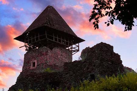 Невицкий замок в Украине