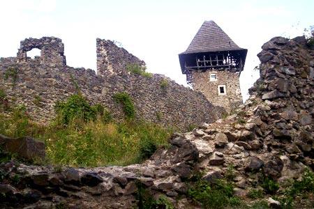 Невицкий замок в Закарпатье