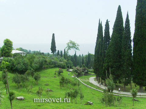 Абхазия пейзаж