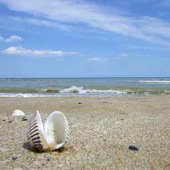 пляжный отдых в солнечной Италии