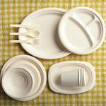 Польза и вред одноразовой пластиковой посуды