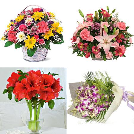 Какие цветы подарить женщине чтобы ее