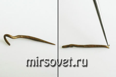жгутики для рисунка кожи змеи