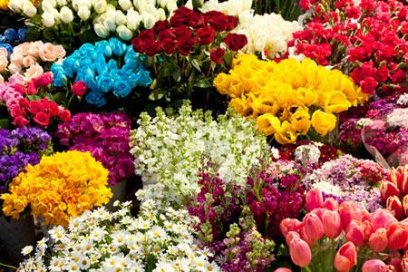 проверить свежесть цветов при покупке