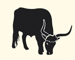 гороскоп на 2013 год Бык