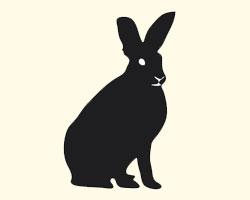 гороскоп на 2013 год Кролик (Кот)