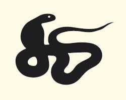 гороскоп на 2013 год Змея