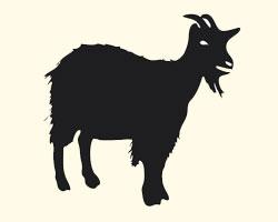 гороскоп на 2013 год Овца (Коза)