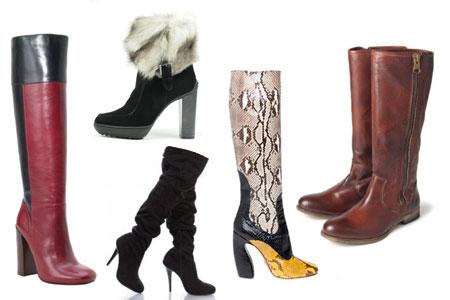 модные сапоги 2013 зима